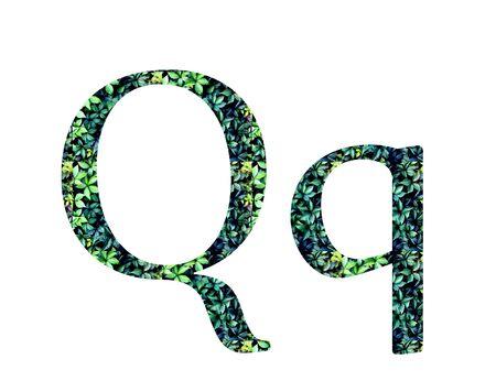 alphabet, letters  from green grape leaves. Letter Q Standard-Bild