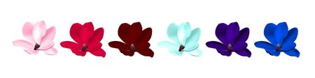 beautiful magnolia flower isolated.  photorealistic illustration of varicoloured, multicolor flowers with easy color change pink, red, burgundy,blue, violet, purple Фото со стока