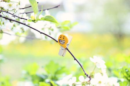 Good mood emoji on plant. Positive emotions concept Stock Photo