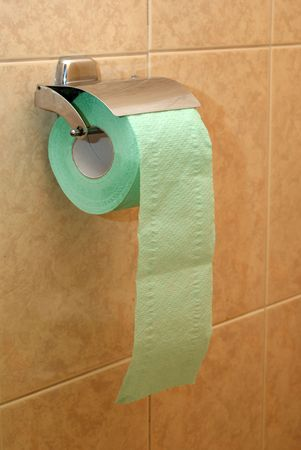 Roll of paper in the toilet photo