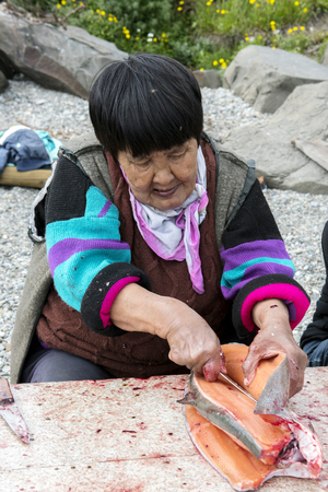 Senior Chukchi woman cuts  just catched sallmon on the sea shore and prepared it for drying Stock Photo