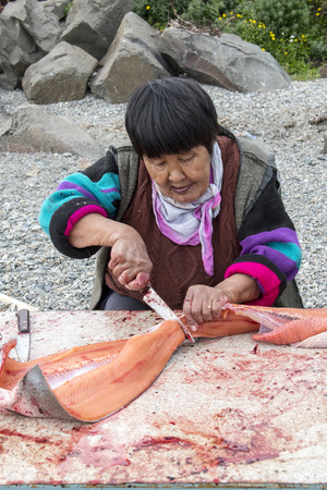 Senior Chukchi woman cuts  just catched sallmon on the sea shore and prepared it for drying Stock fotó