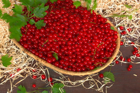 currants: Red currants in wicker basket Stock Photo