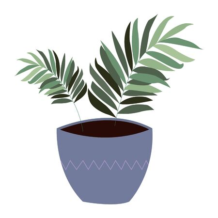 Isolated tropical plant in pot in minimal style. Vector illustration