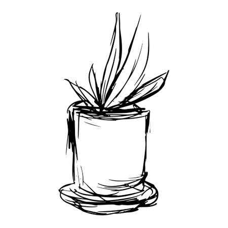 Sketch of aloe plant in a pot in doodle style. Vector illustration