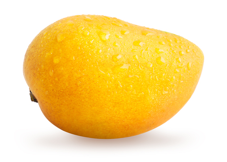 Mango fruit with water drops isolated