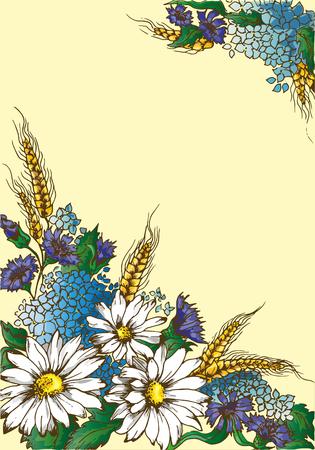 golden daisy: Illustration card daisies, ears of wheat, hydrangea, hand drawn Illustration
