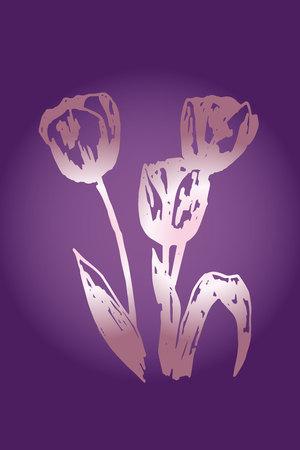 violet background: Illustration of tulips on a violet background