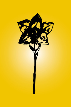solitary: Illustration of a solitary narcissus on yellow background