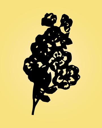 wild rose: Illustration of wild rose on a yellow background Illustration