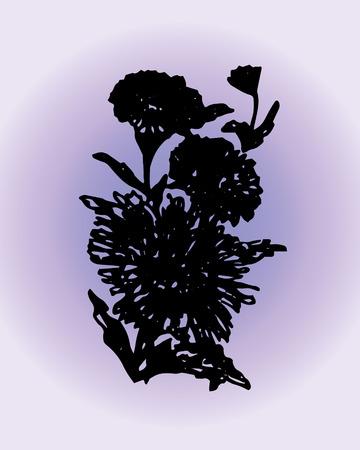 aster: Illustration aster on a purple background Illustration