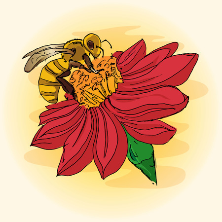 Illustration of a bee on a flower, pollination, hand-drawing Illustration