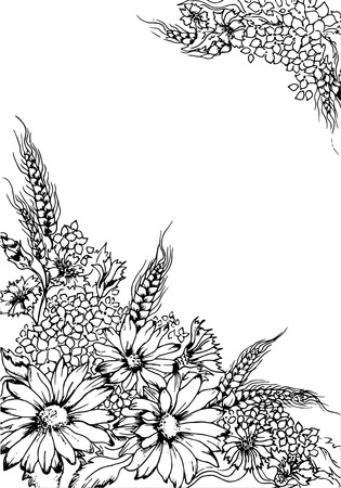 field flowers: Illustration black and white greeting card with flowers Illustration