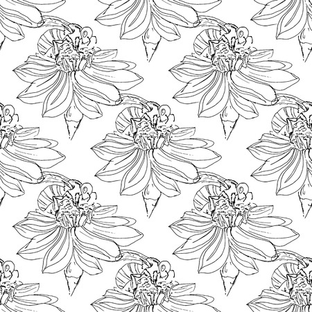 pollen: Hand-drawn illustrations of a bee on a flower, pollination, hand-drawing. Seamless pattern. Illustration