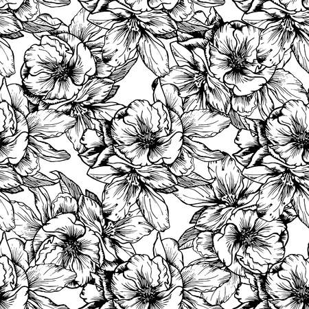 illustrations dessinées à la main. fleurs et coquelicots en noir et blanc. Seamless.