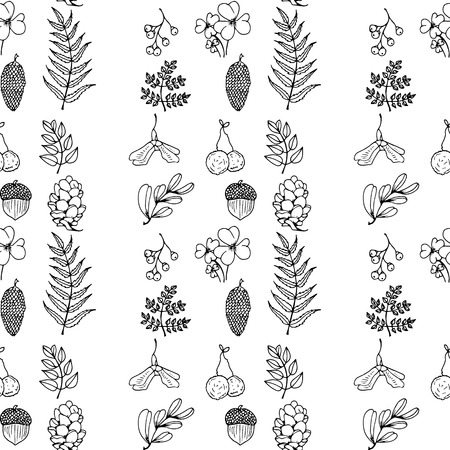 Nature illustration. Natural materials. Forest postcard. Forest fruits, leaves, branches. Black and white seamless pattern