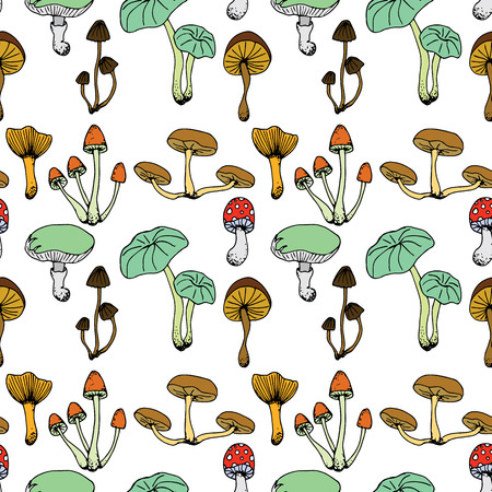 Nature illustration. Natural materials. Forest postcard. Assorted mushrooms. Edible and poisonous mushrooms. Seamless pattern.