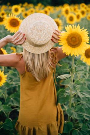 Women in the field of sunflowers Stock Photo