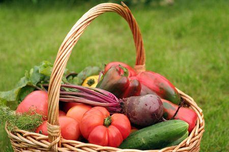 nutriments: Cesta de la compra con verduras