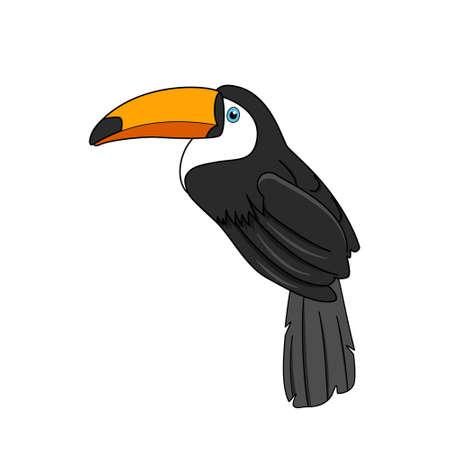 Toco toucan bird vector design, tropical bird.