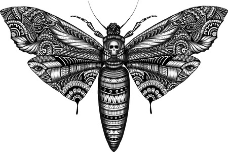 dead insect: deadhead butterfly doodle illustration