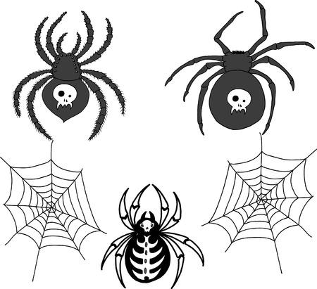 latrodectus: Spiders and spider web, vector set