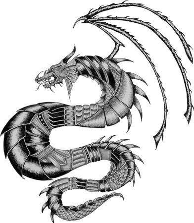 tatouage dragon: Tatouage de dragon Illustration en noir et blanc