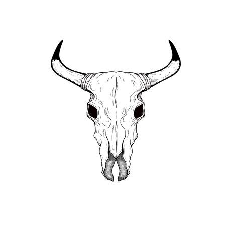 手描きバッファロー頭蓋骨ネイティブ アメリカンのトーテム  イラスト・ベクター素材