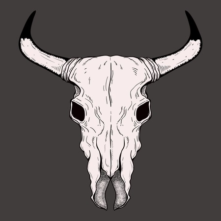 cherokee: Hand drawn Buffalo Skull Native American Totem