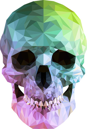Low poly vector skull in 3d realistic look