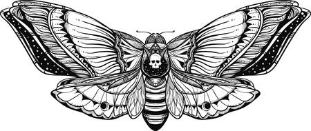 Illustration de doodle papillon deadhead noir et blanc.