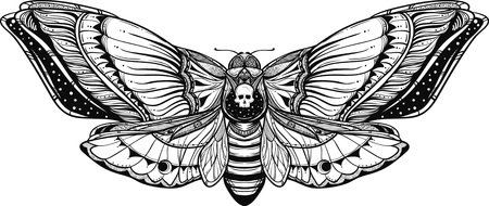 Black and white deadhead butterfly doodle illustration.