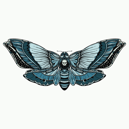 black and white deadhead butterfly doodle illustration Vettoriali