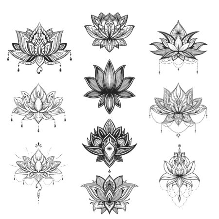 Filigree lotus flower set, vector handdrawn illustration 向量圖像