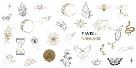 Vector witch magic design elements set. Hand drawn, doodle, sketch magician collection. Witchcraft symbols. Perfect for tattoo, textile, cards, mystery 免版税图像 - 138379331