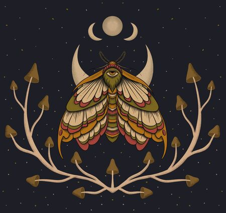 Eyed hawk-moth colored illustration, drawing, engraving, ink, line art