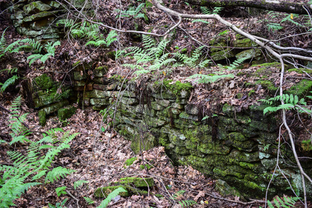 homestead: Old homestead foundation from the 19th century in the Appalachian Mountains.