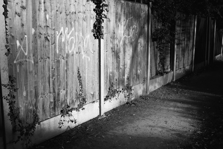 back alley: Quite back alley with creeper plants and graffiti on the fence, in black and white