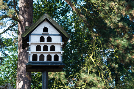 pigeon holes: White colored wooden pigeon house in a park Stock Photo