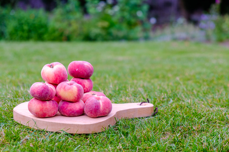 Saturn peach on a serving board in the garden