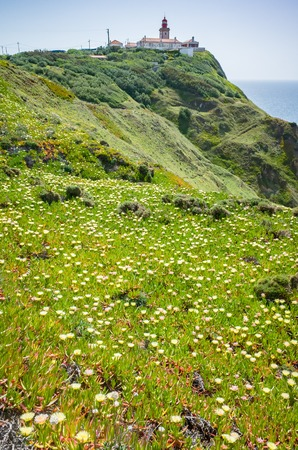 Lighthouse and wildflowers bloom at Cabo da Roda, Sintra, Portugal Stok Fotoğraf