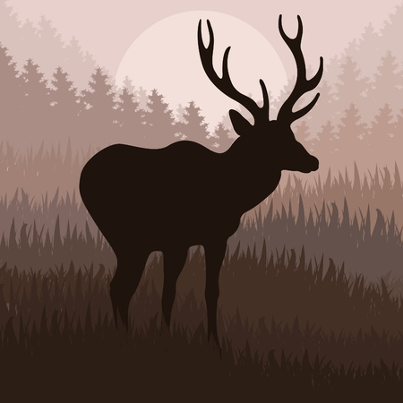seasonal forest: Deer in the forest vector background Illustration