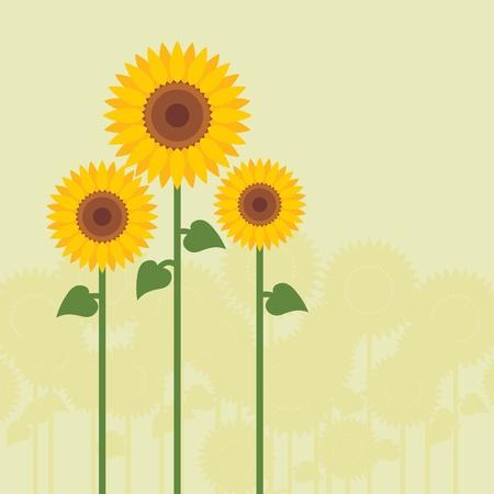 Yellow sunflowers vector background Stock Vector - 10452955