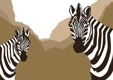 zebra heads: Animated zebra couple in wild nature landscape illustration