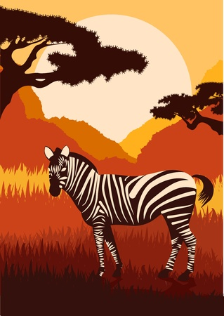 zebra head: Animated zebra in wild nature landscape illustration Illustration
