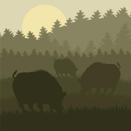 охотник: Анимированные кабана в лесу листвы иллюстрации