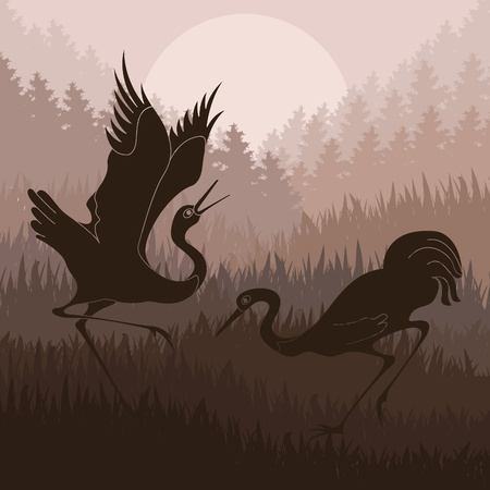 asian couple: Animated cranes in wild forest landscape illustration