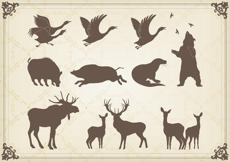 incendio bosco: Vintage caccia gli animali della foresta illustrazione collezione