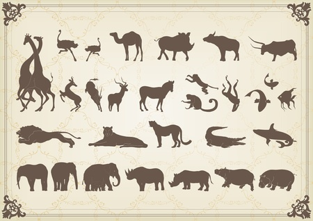 giraffe silhouette: Vintage african animals illustration collection