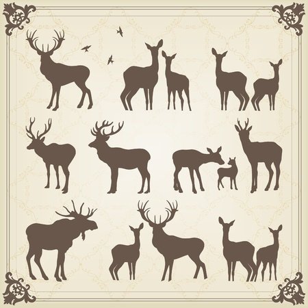 Vintage deer and moose illustration collection Illustration